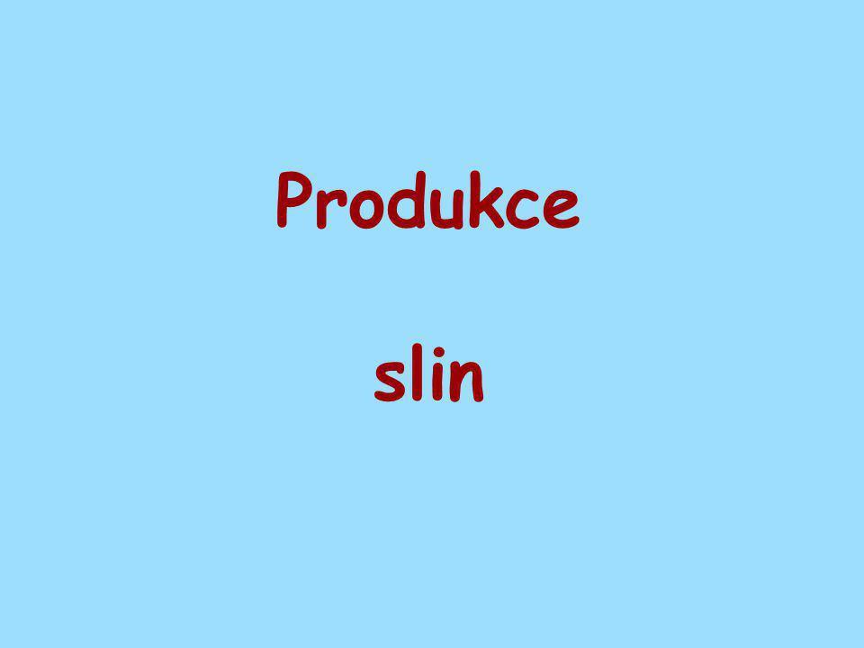 Produkce slin