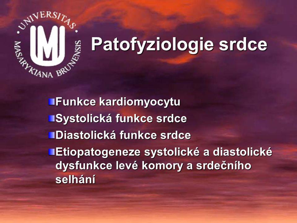 Patofyziologie srdce Funkce kardiomyocytu Systolická funkce srdce