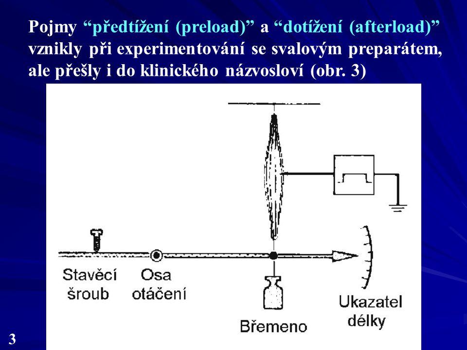 Pojmy předtížení (preload) a dotížení (afterload) vznikly při experimentování se svalovým preparátem, ale přešly i do klinického názvosloví (obr. 3)