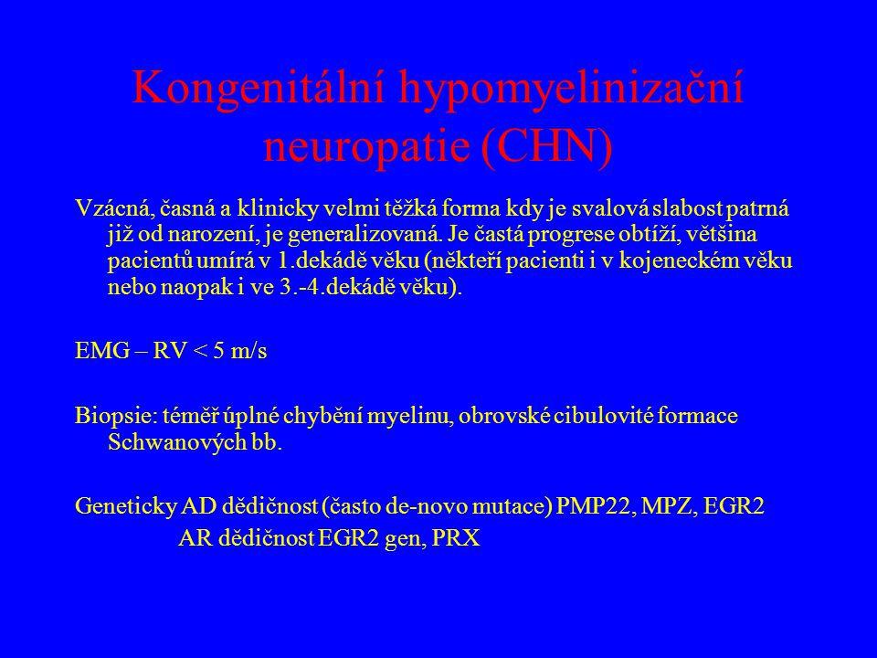 Kongenitální hypomyelinizační neuropatie (CHN)