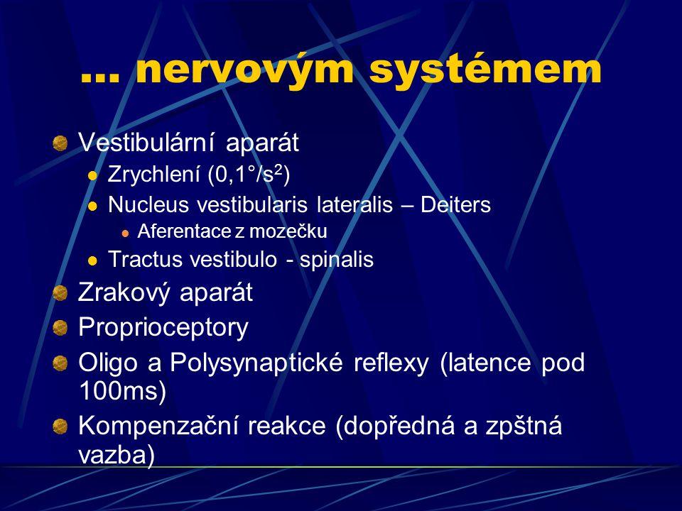 … nervovým systémem Vestibulární aparát Zrakový aparát Proprioceptory