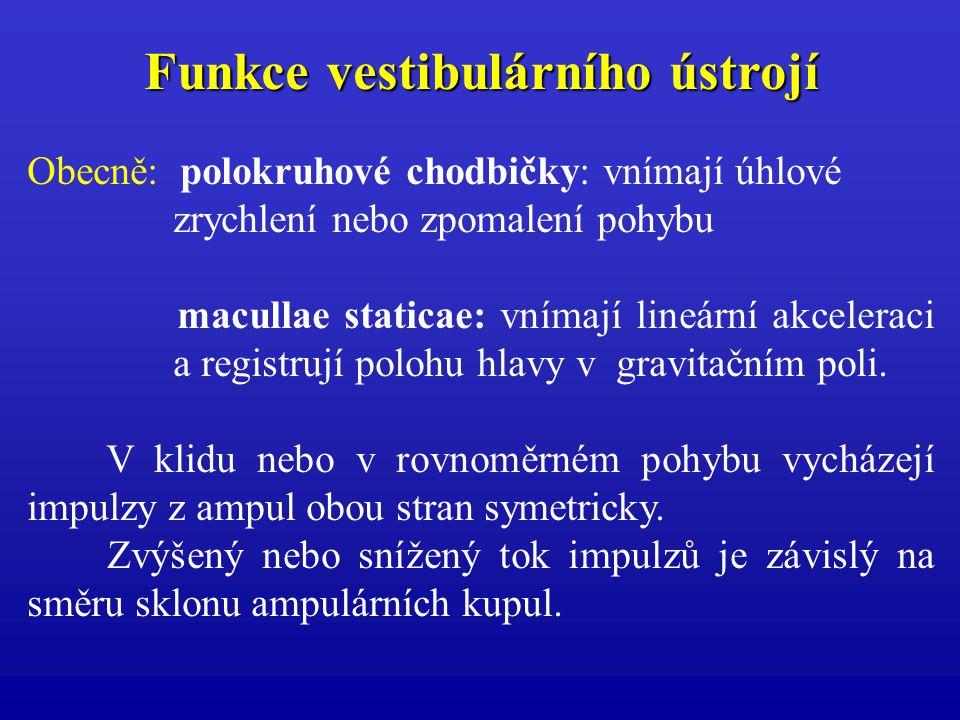 Funkce vestibulárního ústrojí