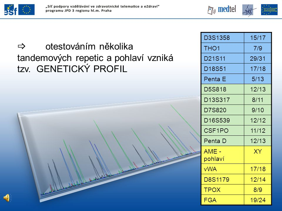 D3S1358 15/17. THO1. 7/9. D21S11. 29/31. D18S51. 17/18. Penta E. 5/13. D5S818. 12/13. D13S317.