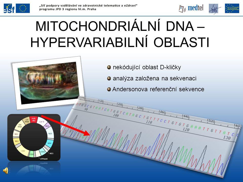 MITOCHONDRIÁLNÍ DNA – HYPERVARIABILNÍ OBLASTI