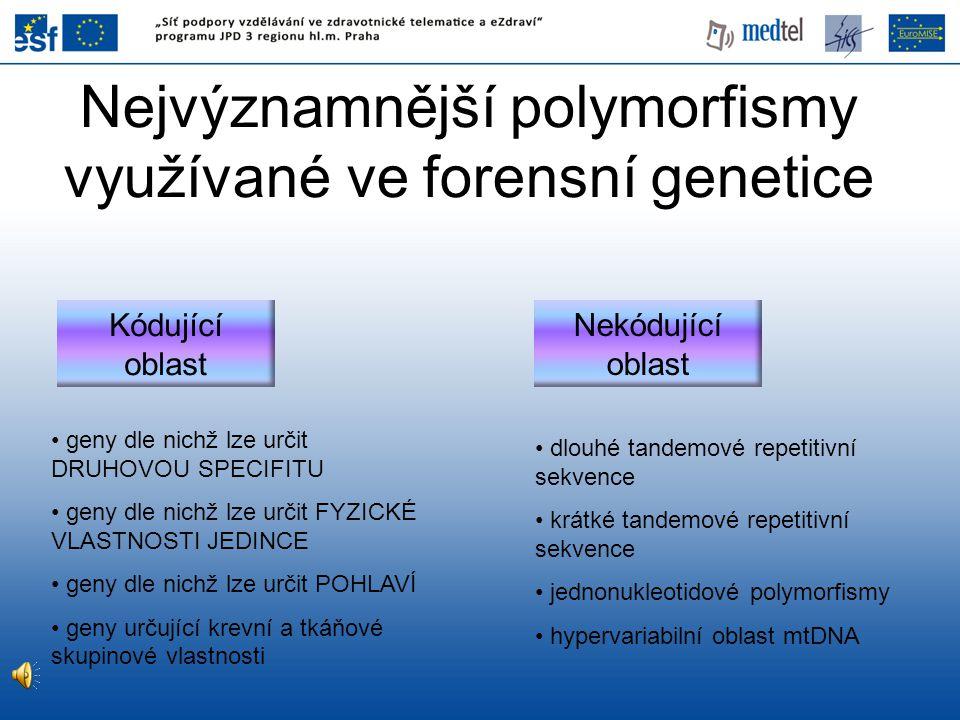 Nejvýznamnější polymorfismy využívané ve forensní genetice