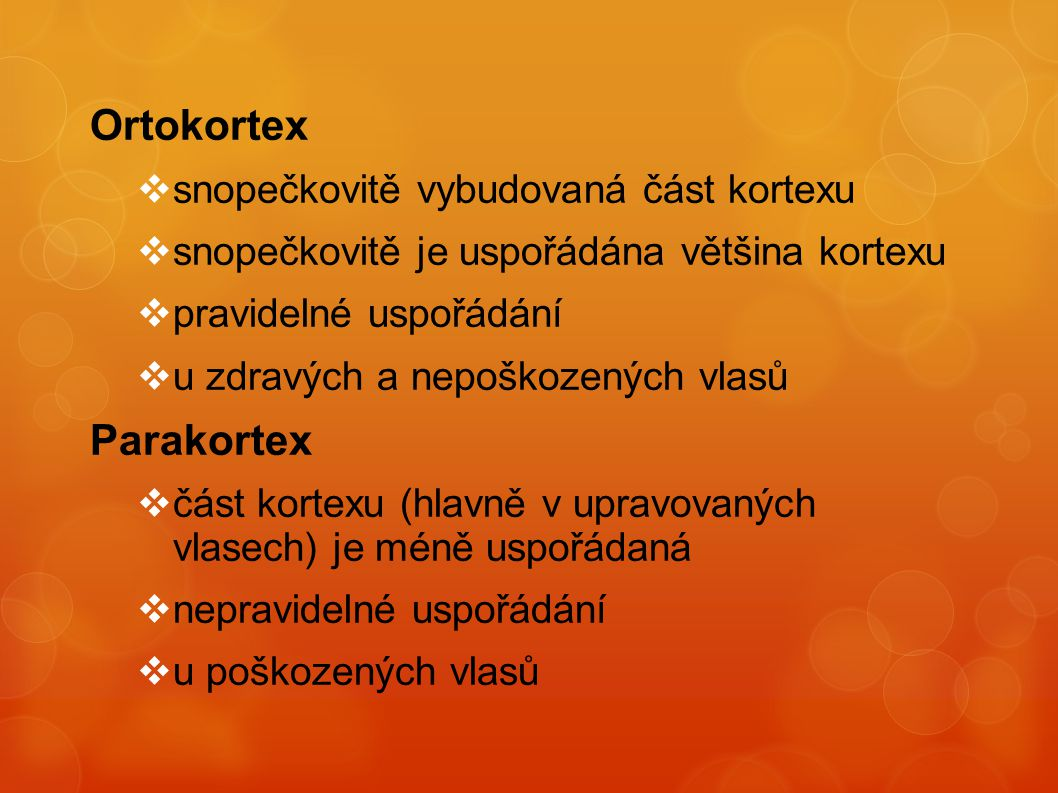 Ortokortex Parakortex snopečkovitě vybudovaná část kortexu