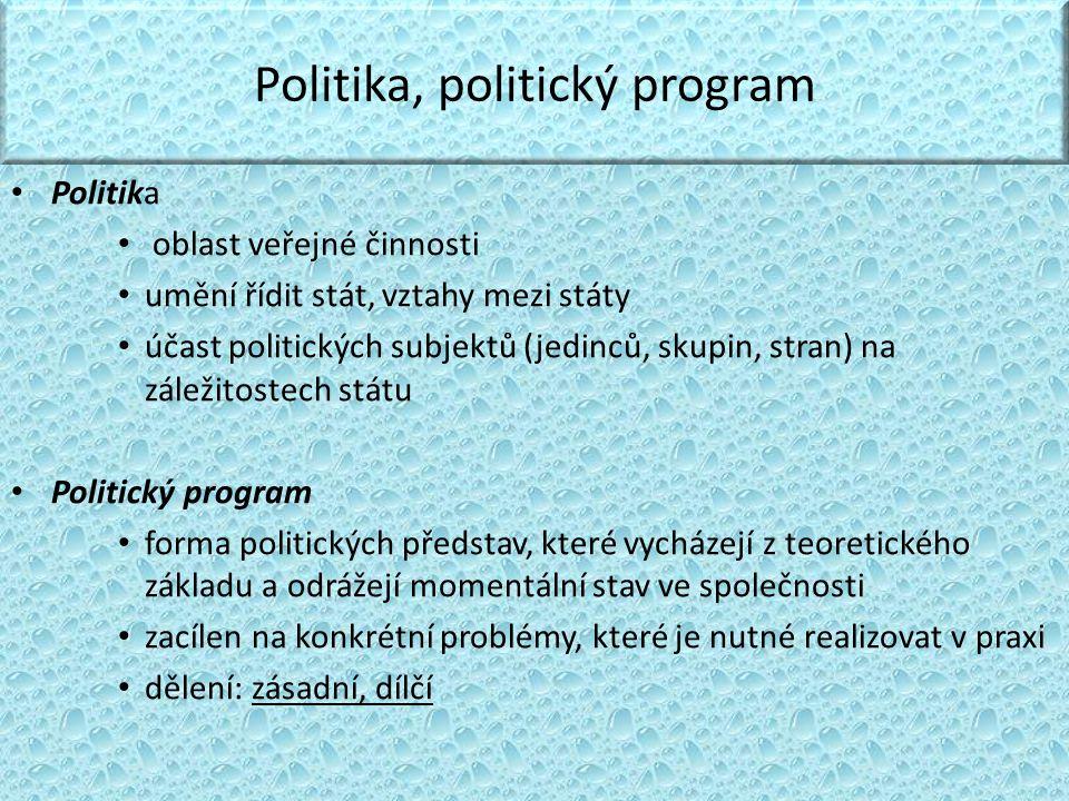 Politika, politický program