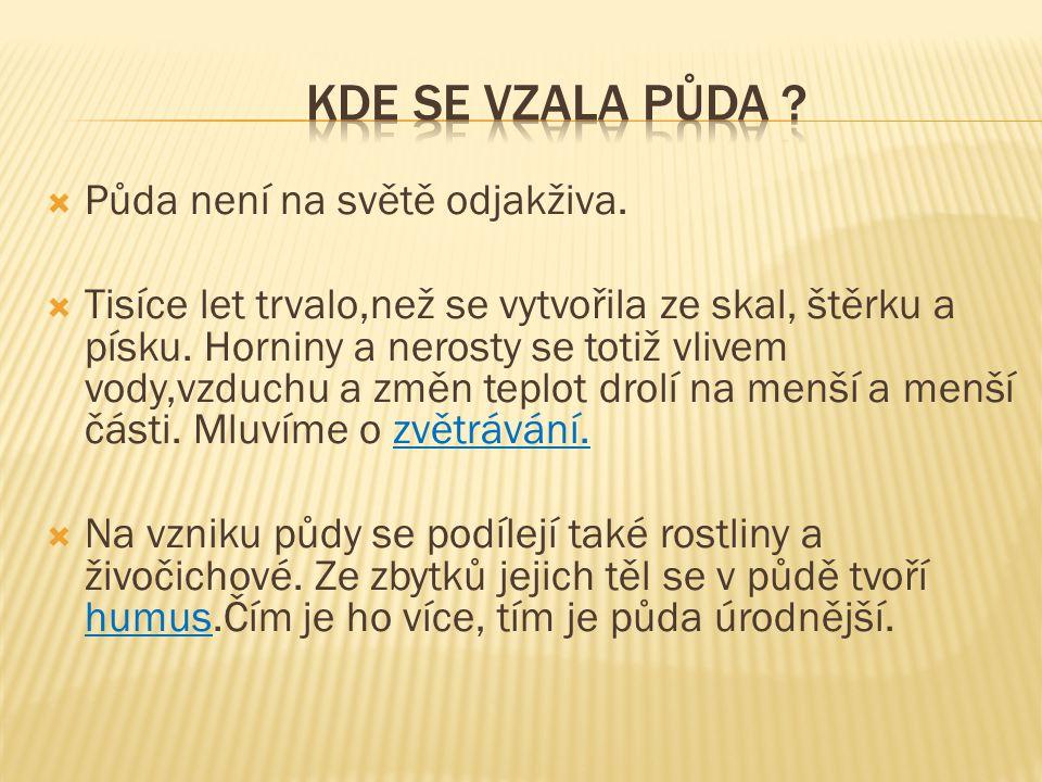 KDE SE VZALA PŮDA Půda není na světě odjakživa.