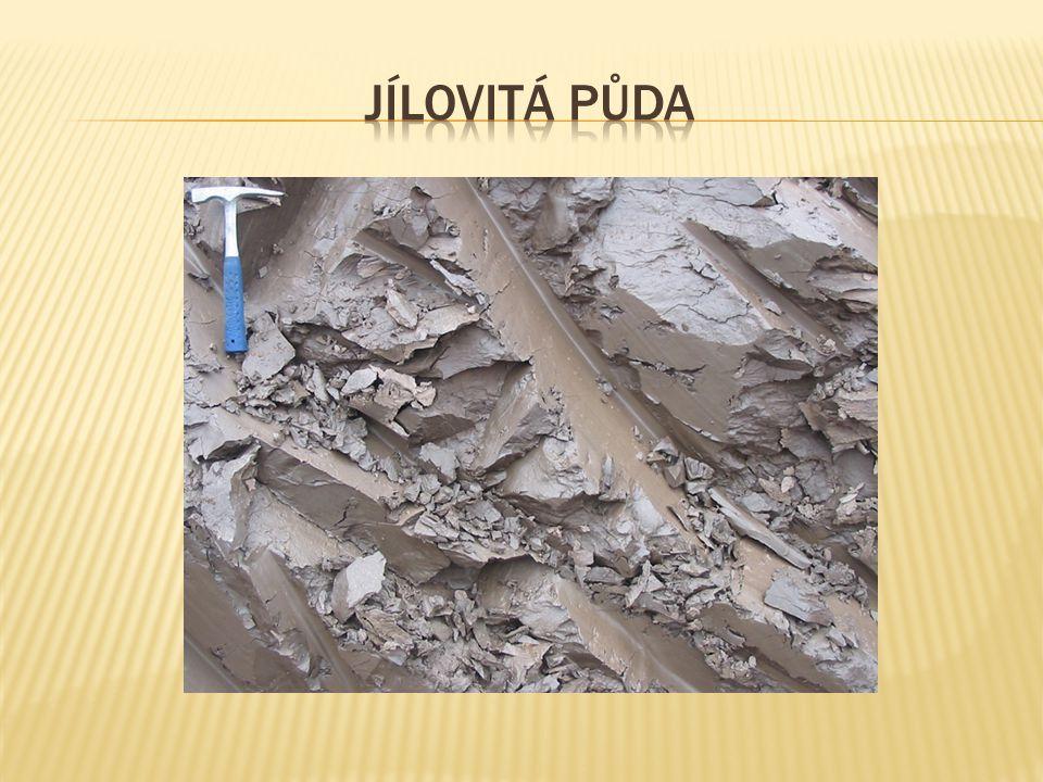 Jílovitá půda