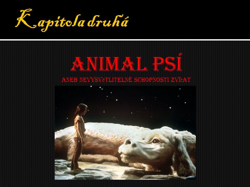 Aneb nevysvětlitelné schopnosti zvířat