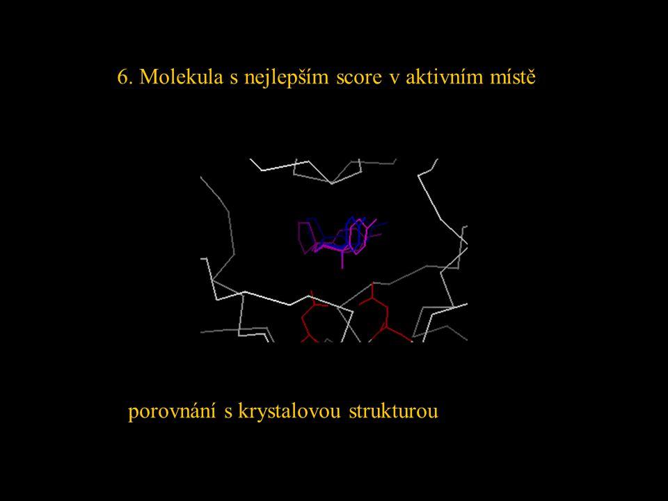 6. Molekula s nejlepším score v aktivním místě