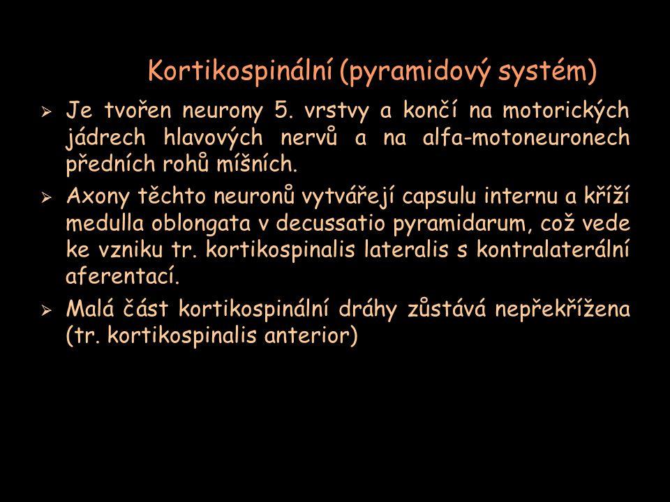 Kortikospinální (pyramidový systém)