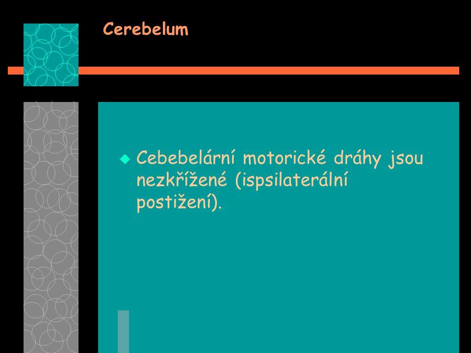 Cerebelum Cebebelární motorické dráhy jsou nezkřížené (ispsilaterální postižení).