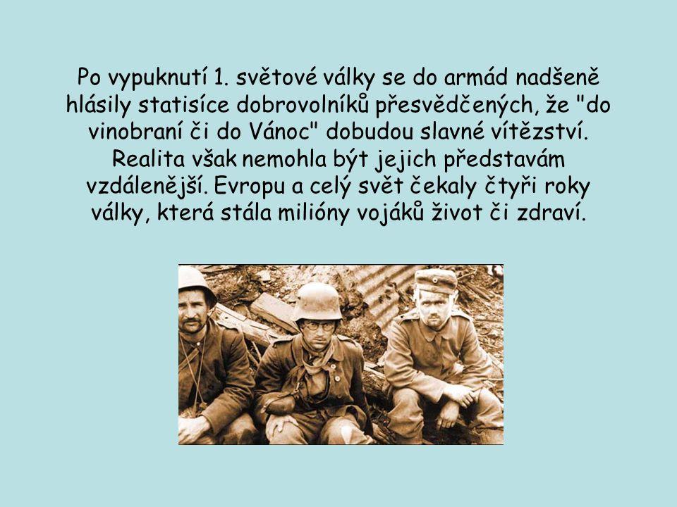 Po vypuknutí 1. světové války se do armád nadšeně hlásily statisíce dobrovolníků přesvědčených, že do vinobraní či do Vánoc dobudou slavné vítězství.