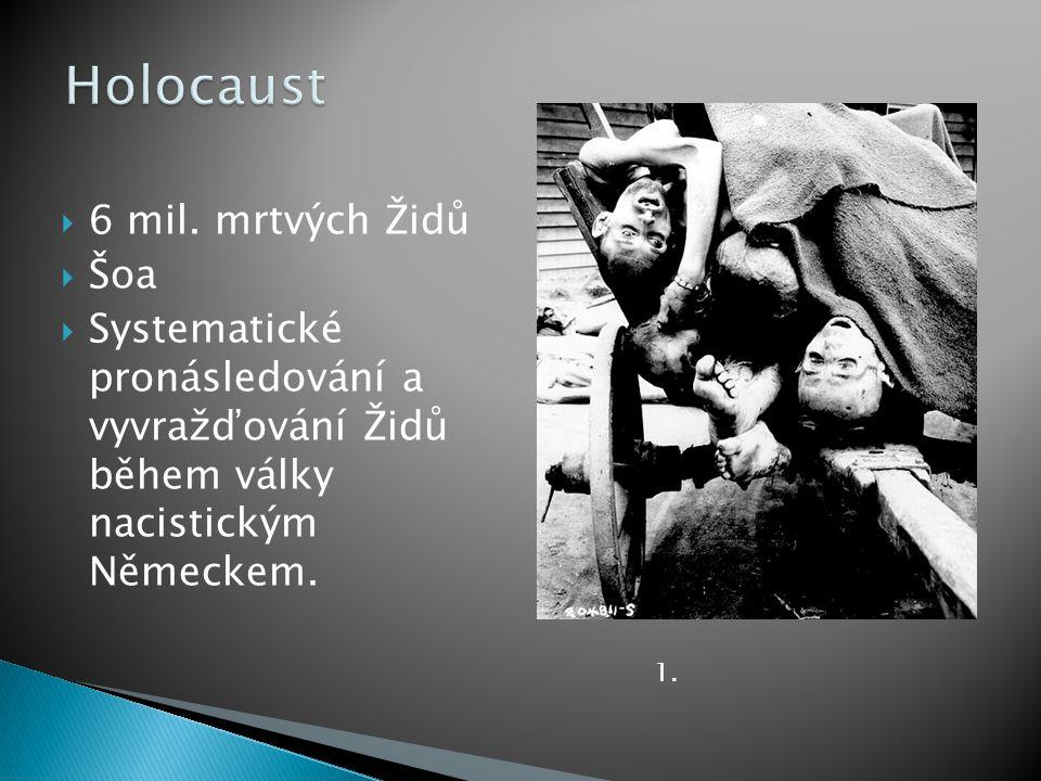 Holocaust 6 mil. mrtvých Židů Šoa
