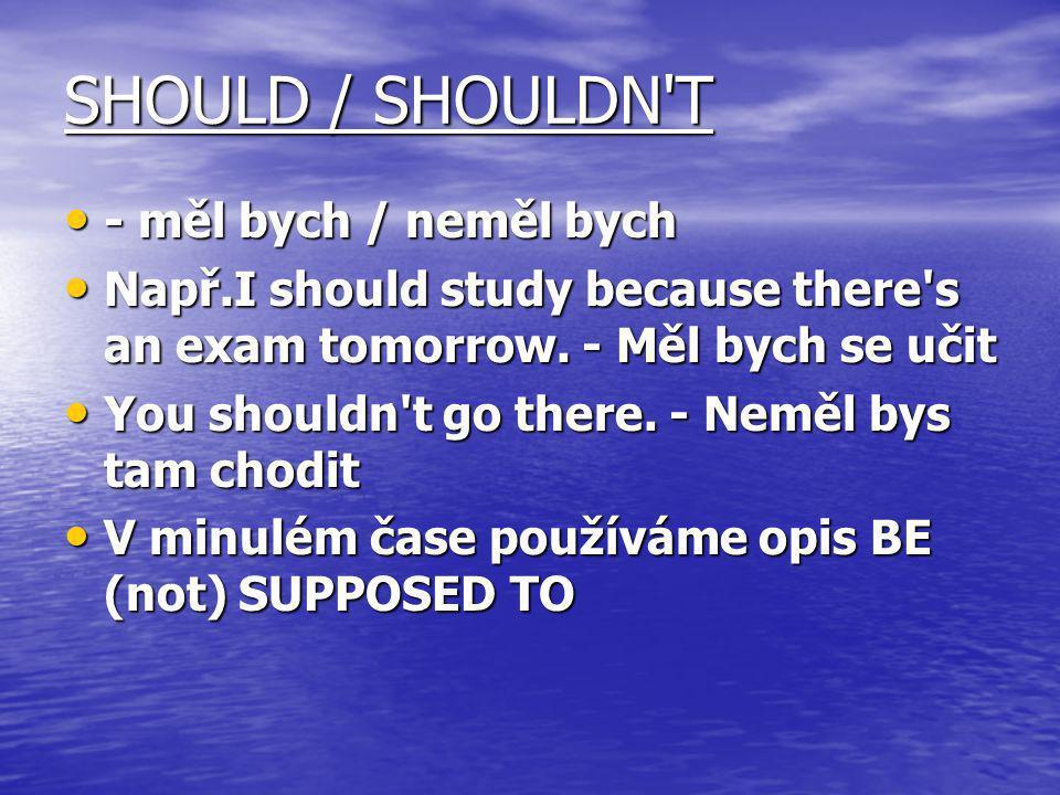SHOULD / SHOULDN T - měl bych / neměl bych