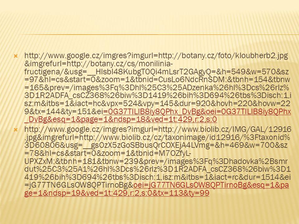http://www.google.cz/imgres imgurl=http://botany.cz/foto/kloubherb2.jpg&imgrefurl=http://botany.cz/cs/monilinia-fructigena/&usg=__HIsbl48KubgT0Qi4mLsrT2GAgyQ=&h=549&w=570&sz=97&hl=cs&start=0&zoom=1&tbnid=CusLo6NdcRnSDM:&tbnh=154&tbnw=165&prev=/images%3Fq%3Dhl%25C3%25ADzenka%26hl%3Dcs%26rlz%3D1R2ADFA_csCZ368%26biw%3D1419%26bih%3D694%26tbs%3Disch:1,isz:m&itbs=1&iact=hc&vpx=524&vpy=145&dur=920&hovh=220&hovw=229&tx=144&ty=151&ei=0G37TILlB8iy8QPhx_DvBg&oei=0G37TILlB8iy8QPhx_DvBg&esq=1&page=1&ndsp=18&ved=1t:429,r:2,s:0