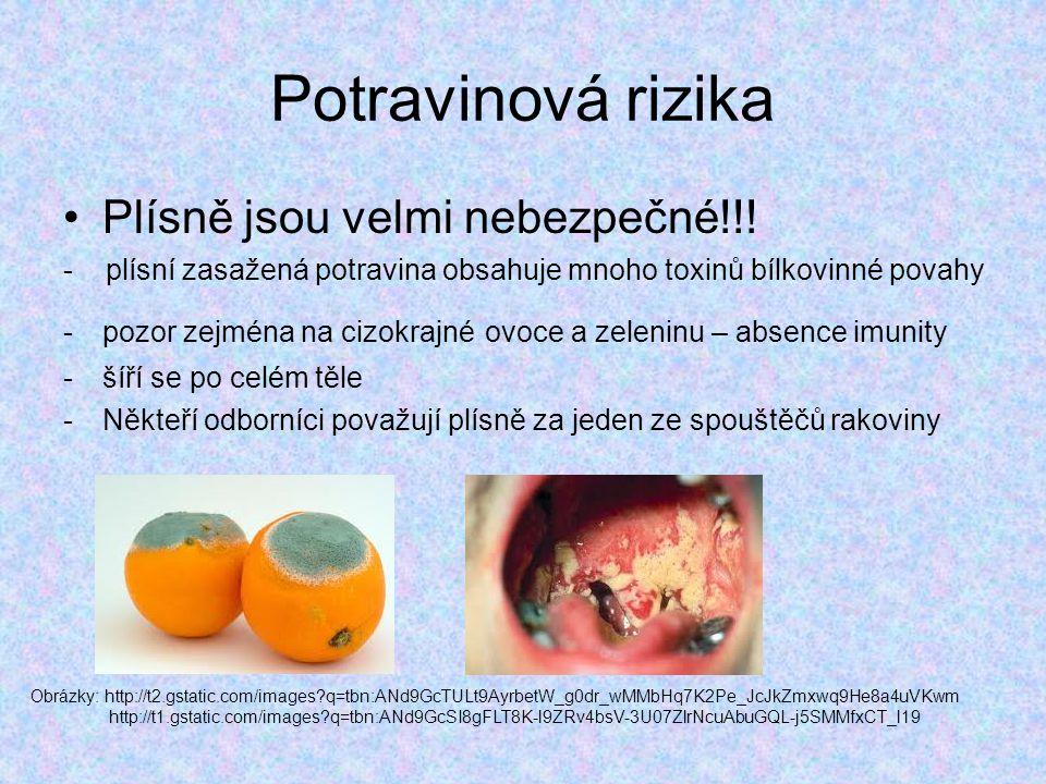 Potravinová rizika Plísně jsou velmi nebezpečné!!!