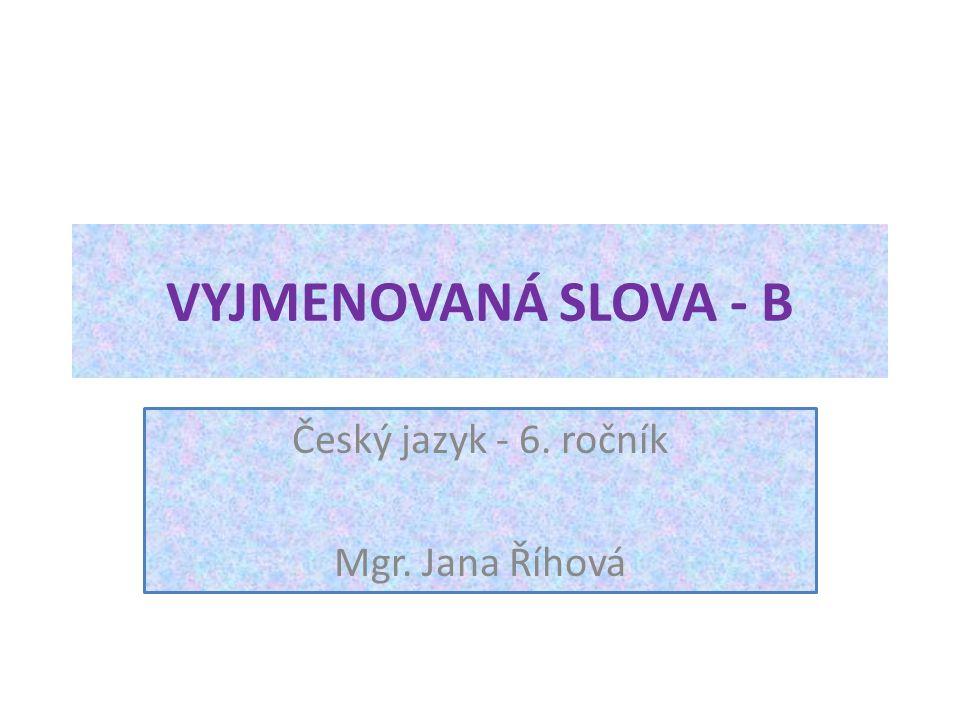 Český jazyk - 6. ročník Mgr. Jana Říhová