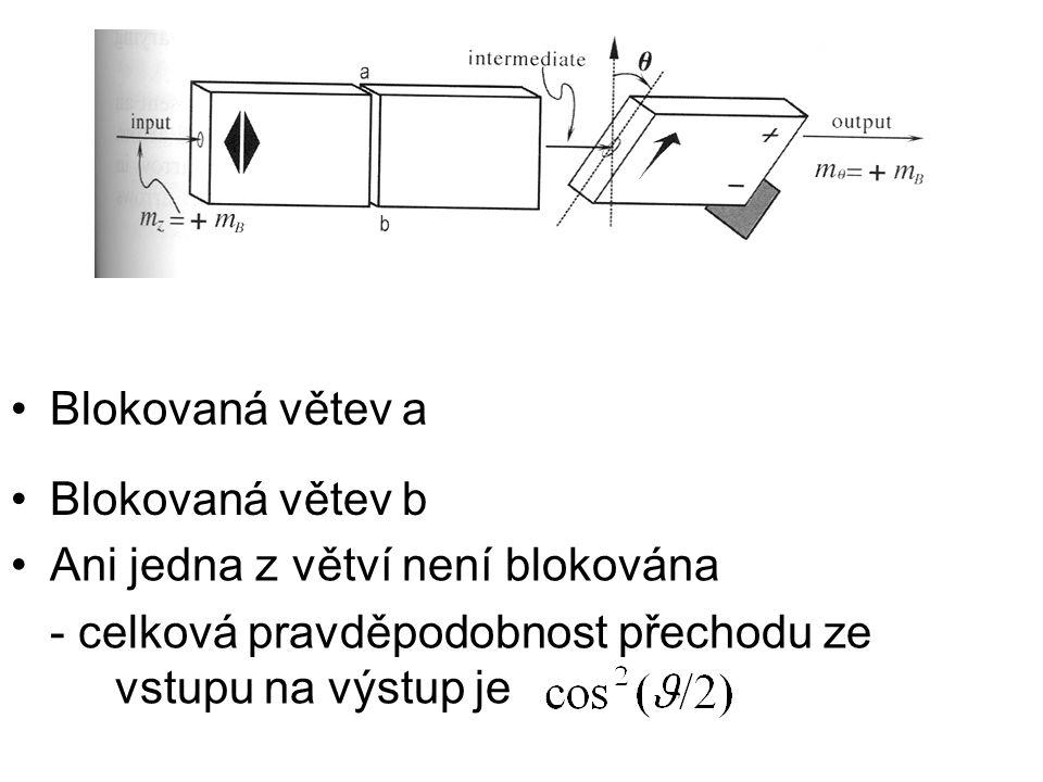 Blokovaná větev a Blokovaná větev b. Ani jedna z větví není blokována.