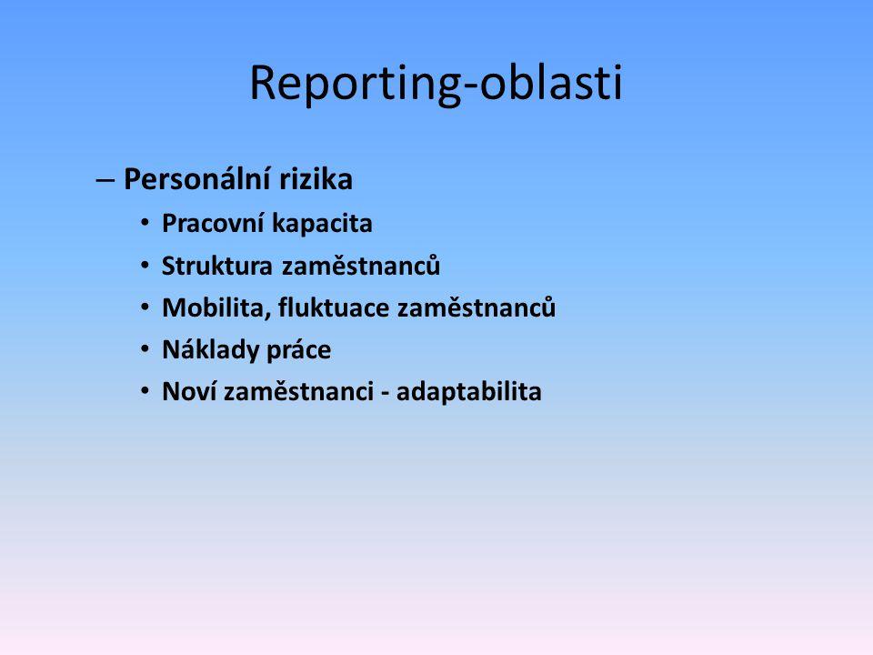 Reporting-oblasti Personální rizika Pracovní kapacita