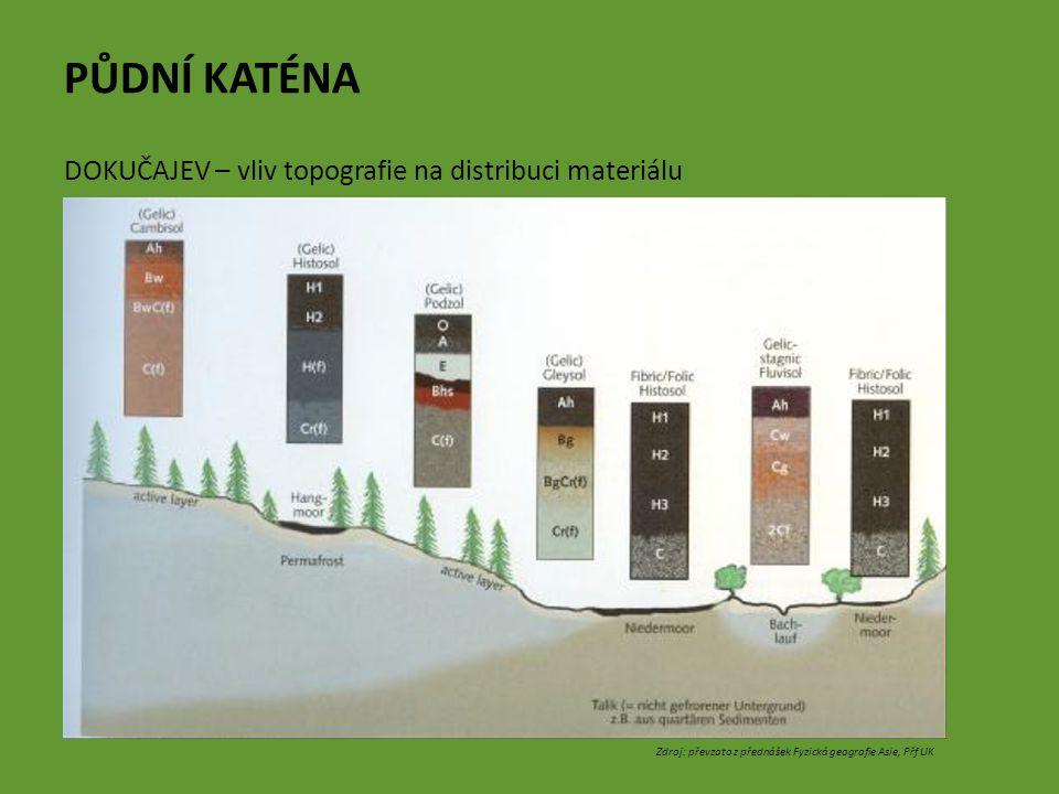 PŮDNÍ KATÉNA DOKUČAJEV – vliv topografie na distribuci materiálu