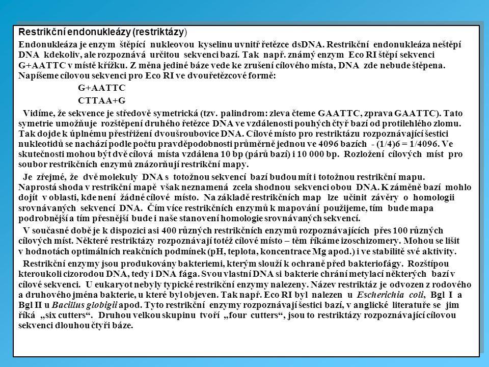 Restrikční endonukleázy (restriktázy)