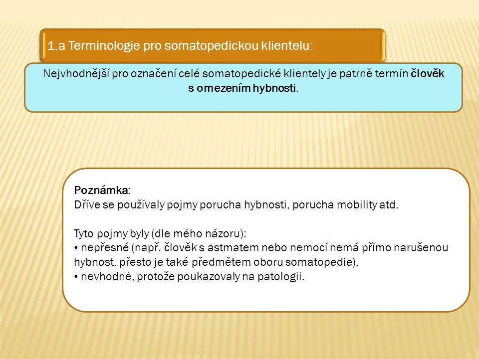 1.a Terminologie pro somatopedickou klientelu: