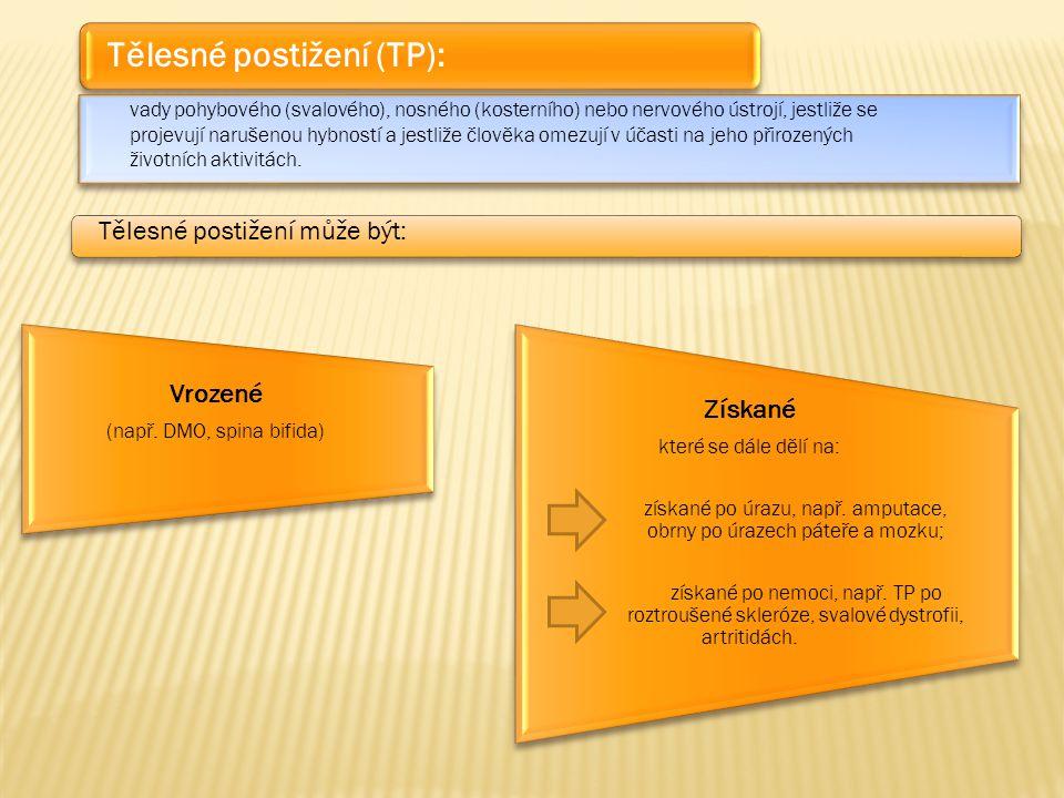 Tělesné postižení (TP):
