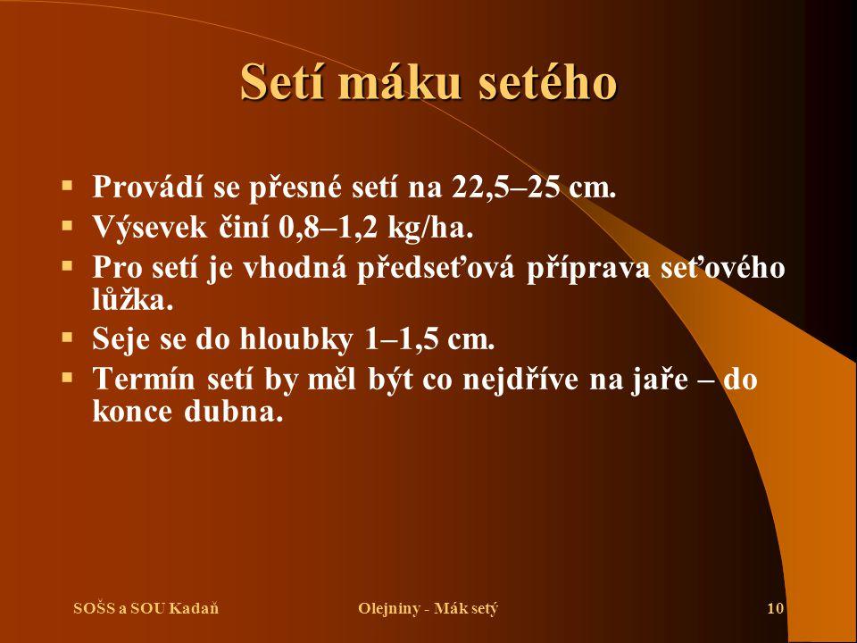 Setí máku setého Provádí se přesné setí na 22,5–25 cm.