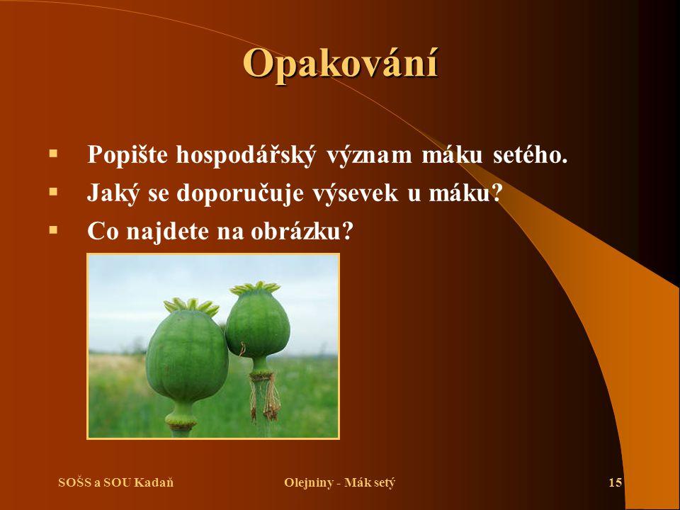 Opakování Popište hospodářský význam máku setého.