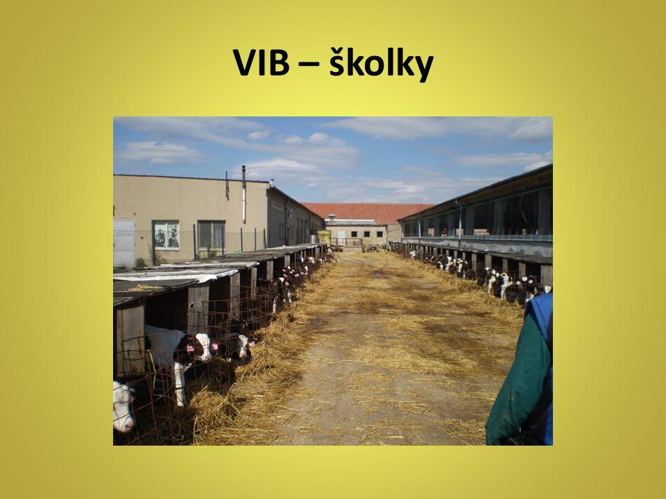 VIB – školky