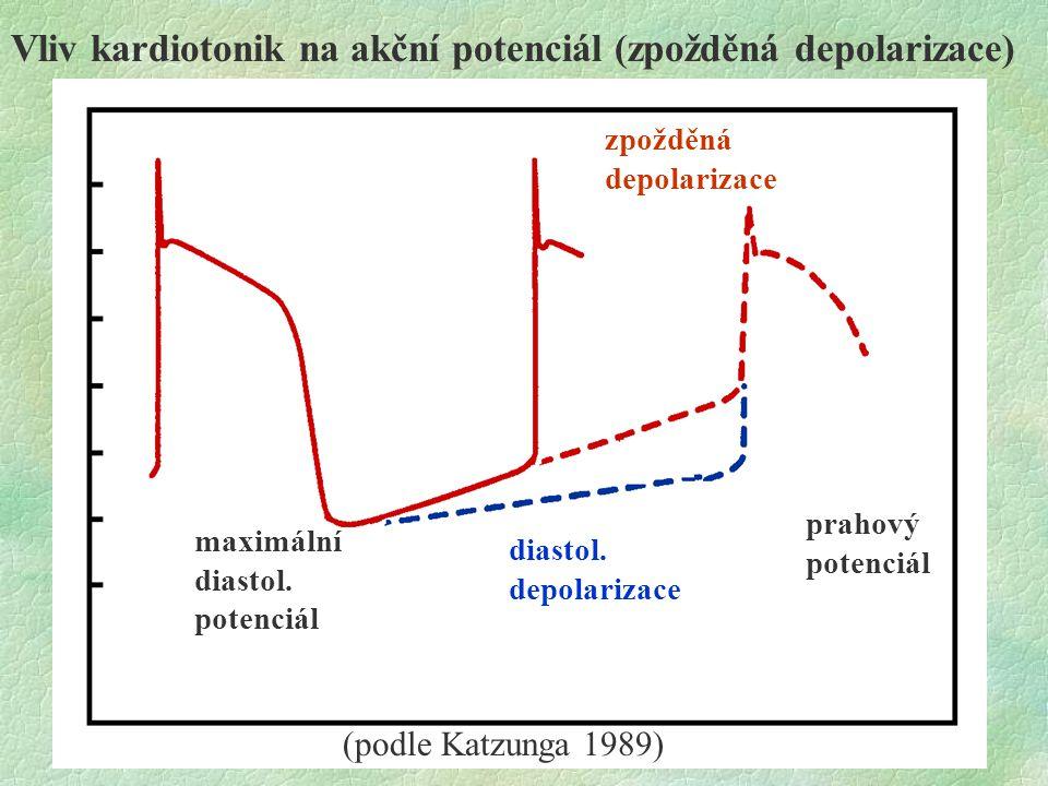 Vliv kardiotonik na akční potenciál (zpožděná depolarizace)