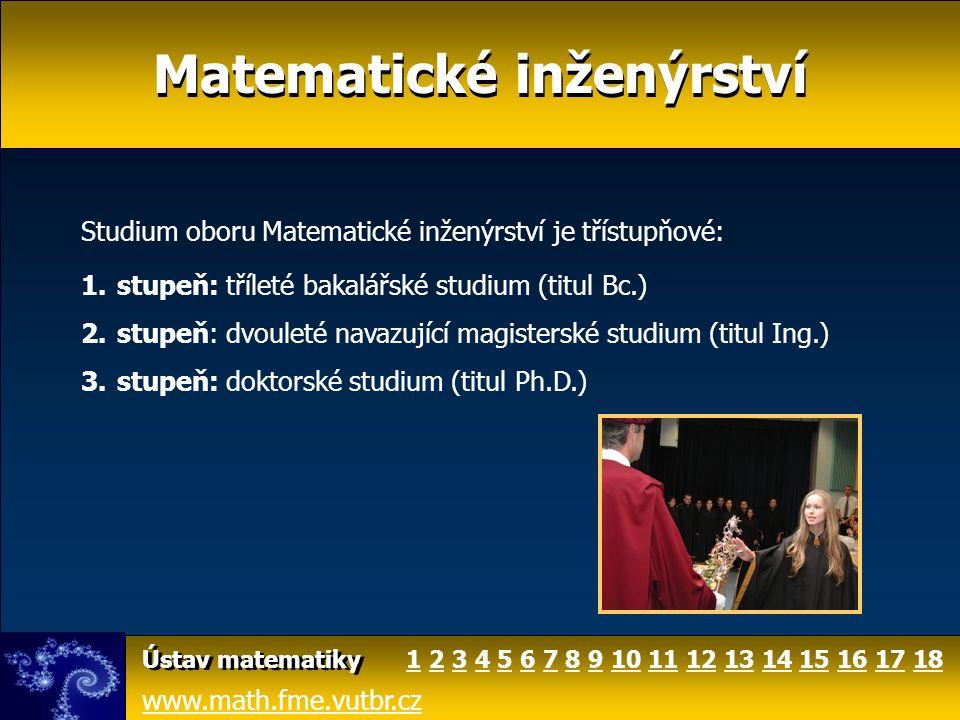 Matematické inženýrství