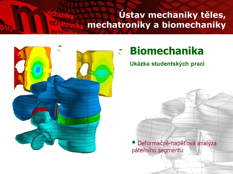 Biomechanika Ukázka studentských prací