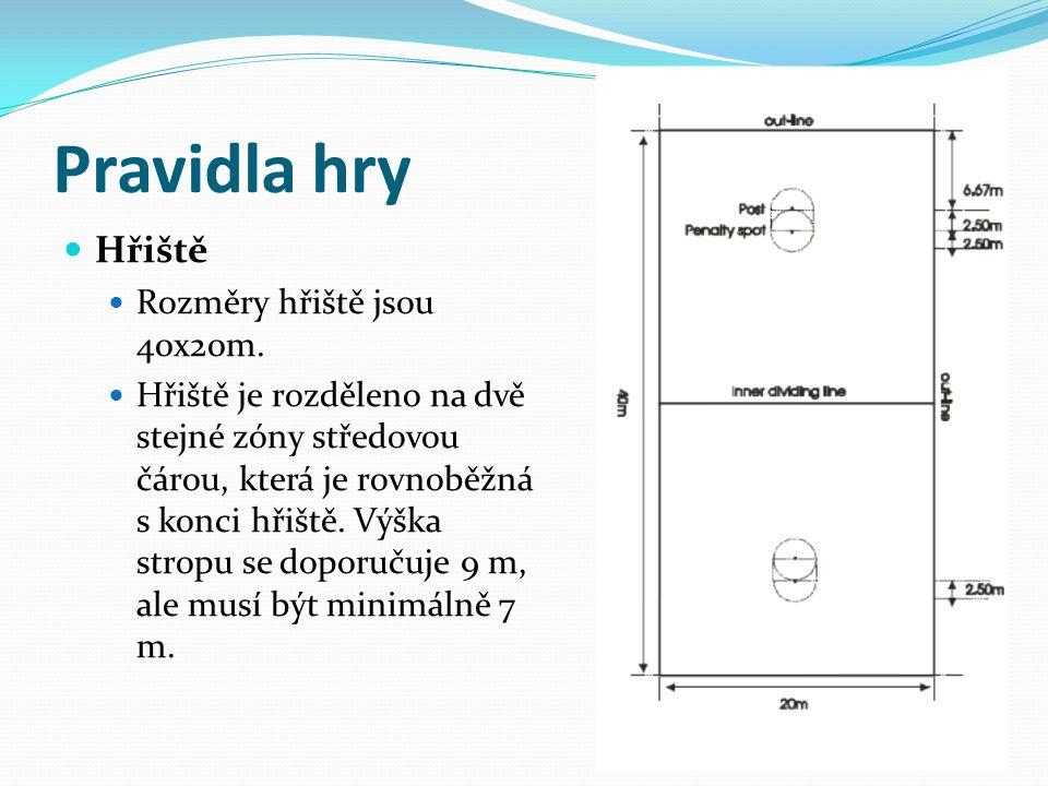 Pravidla hry Hřiště Rozměry hřiště jsou 40x20m.