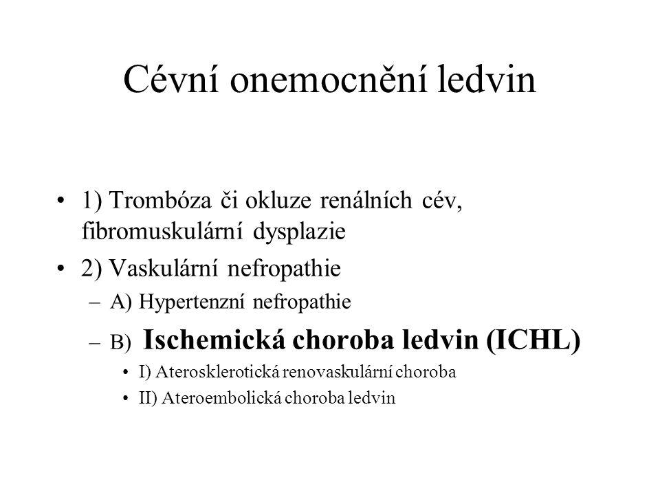Cévní onemocnění ledvin