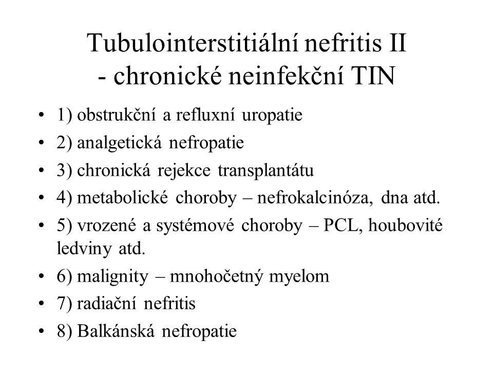 Tubulointerstitiální nefritis II - chronické neinfekční TIN