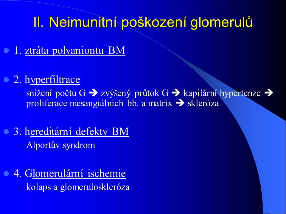 II. Neimunitní poškození glomerulů
