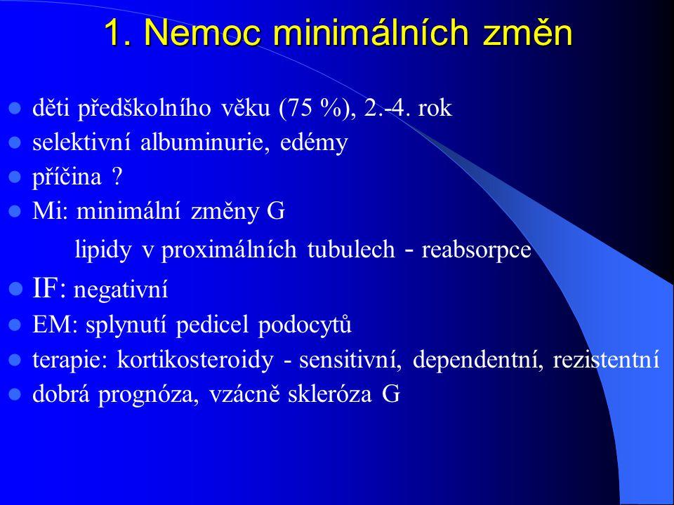 1. Nemoc minimálních změn