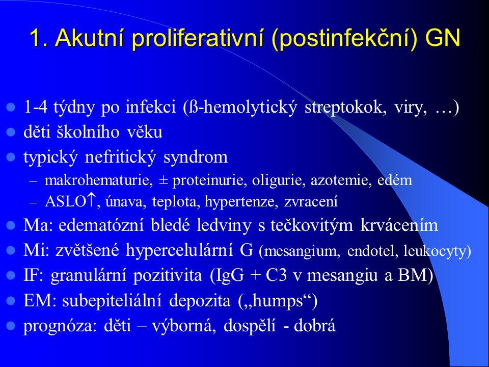 1. Akutní proliferativní (postinfekční) GN