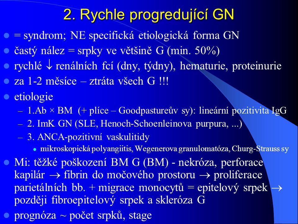 2. Rychle progredující GN