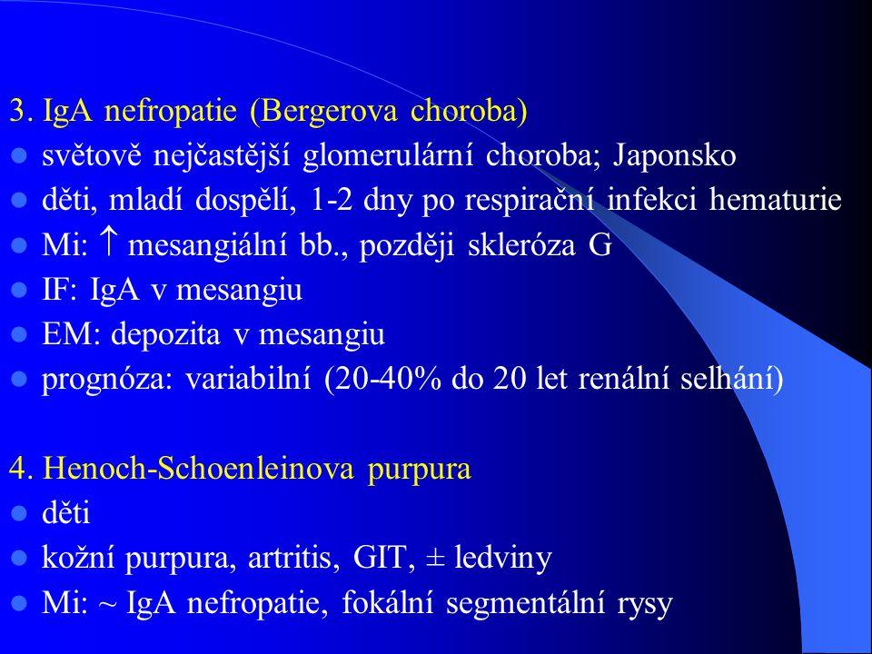 3. IgA nefropatie (Bergerova choroba)