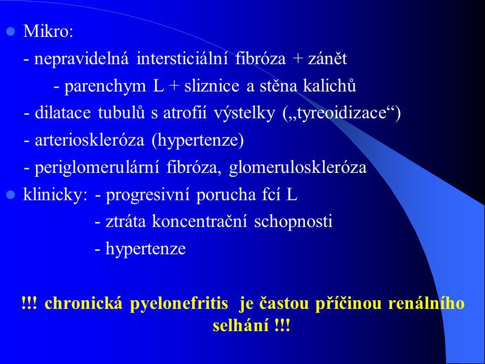 !!! chronická pyelonefritis je častou příčinou renálního selhání !!!