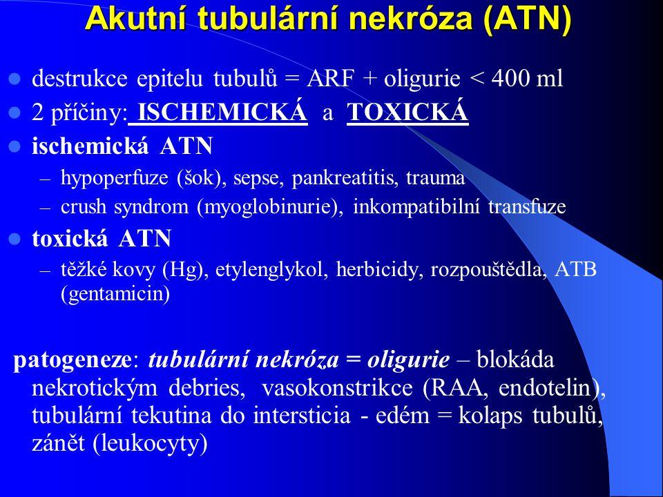 Akutní tubulární nekróza (ATN)