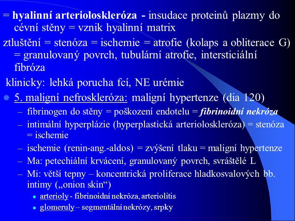 klinicky: lehká porucha fcí, NE urémie