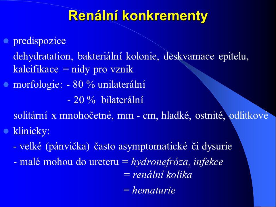 Renální konkrementy predispozice
