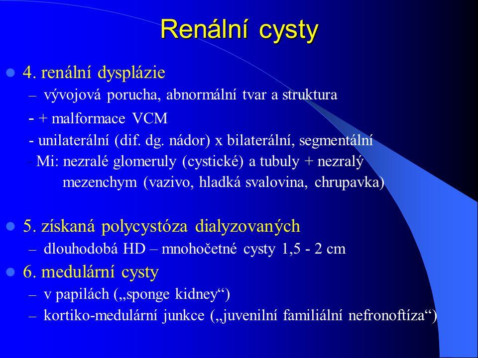 Renální cysty 4. renální dysplázie - + malformace VCM