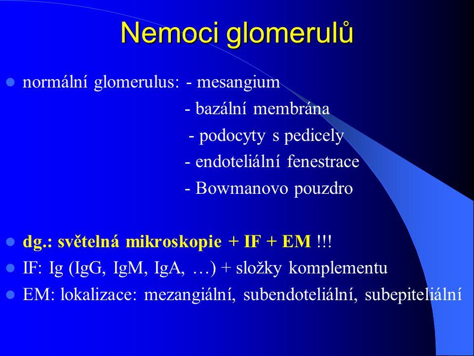Nemoci glomerulů normální glomerulus: - mesangium - bazální membrána