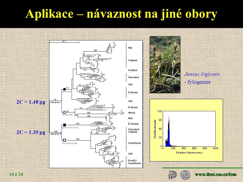 Determinace pohlaví Arecaceae Cannabaceae Caryophyllaceae